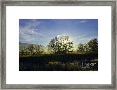 Morning Sun  Framed Print by Nicole Markmann Nelson