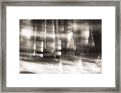 Morning Sunlight In The Wilderness Framed Print by Dan Sproul