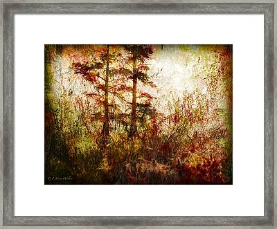 Morning Sunrise Burst Of Color Framed Print by J Larry Walker