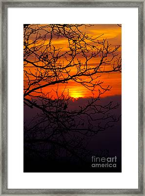 Morning Sunrise Framed Print