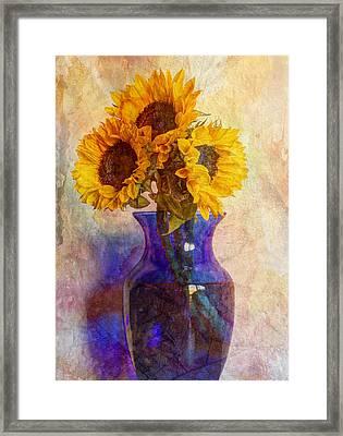 Morning Sunshine Framed Print by Heidi Smith