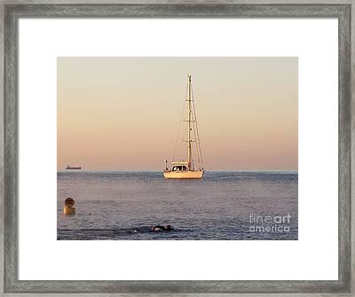 Morning Swim Framed Print by Katy Mei