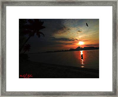 Morning Swim Framed Print by Michael Rucker