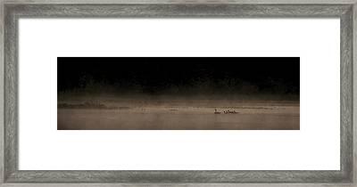 Morning Swim Sepia Framed Print