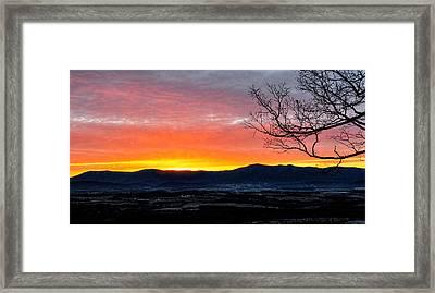 Framed Print featuring the photograph Morning Tangerine Glow by Lara Ellis