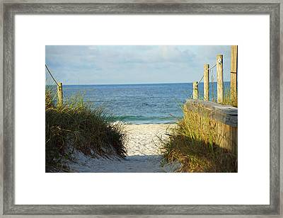 Morning Framed Print by Thomas Fouch