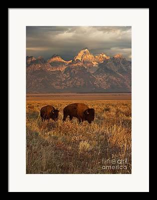 Western United States Photographs Framed Prints