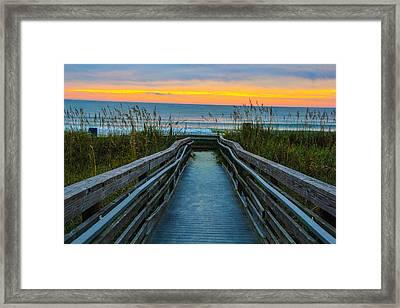 Morning Walk Framed Print by Donald Hovis Jr