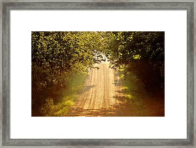Morning Walk II Framed Print