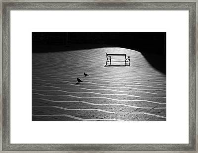 Framed Print featuring the photograph Morning Walk by Inge Riis McDonald