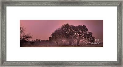 Morning Whispers In Mississippi Framed Print