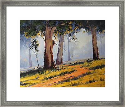 Morning Woodland Framed Print