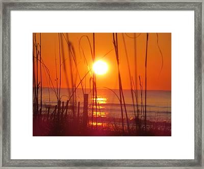 Morning's Beach Framed Print by Nikki McInnes