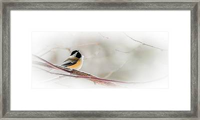 Mornings Heavenly Euphony Framed Print by Optical Playground By MP Ray