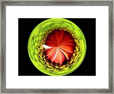 Morphed Art Globe 1 Framed Print by Rhonda Barrett