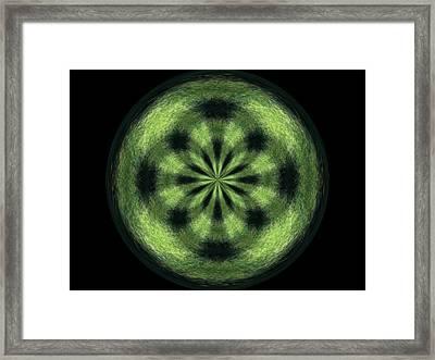 Morphed Art Globe 35 Framed Print