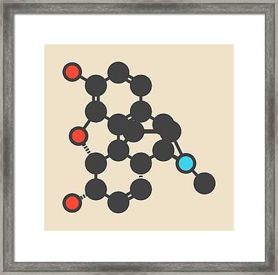 Morphine Pain Drug Molecule Framed Print