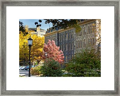 Morrill Hall Cornell University Framed Print