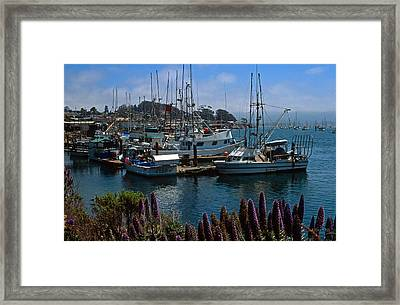 Morro Bay Harbor Framed Print by Kathy Yates