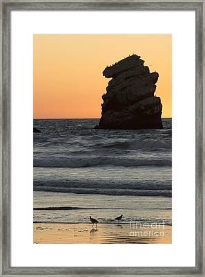 Morro Beach Sunset Framed Print by Terry Garvin