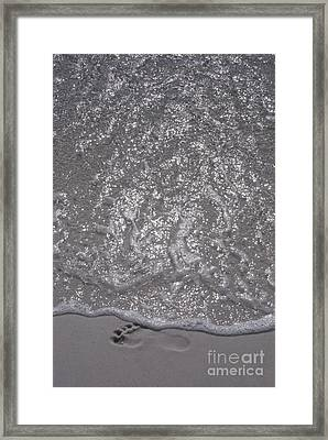 Mortality Framed Print by Jim Wright