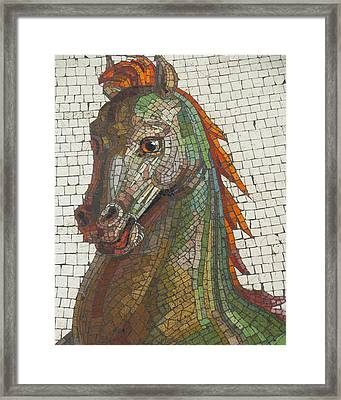Framed Print featuring the photograph Mosaic Horse by Marcia Socolik