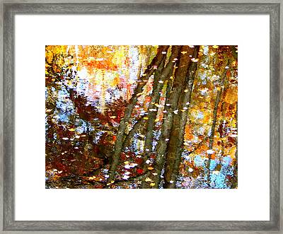 Mosaic Framed Print by Karen Cook