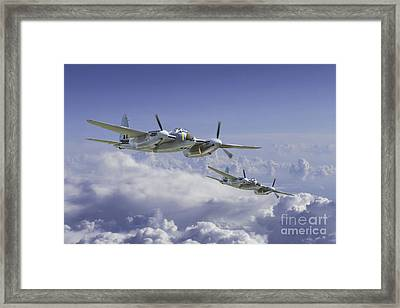 Mosquito Patrol Framed Print