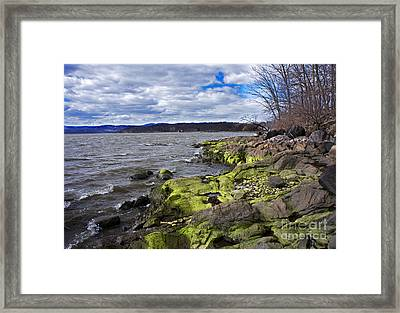 Moss Along The Hudson River Framed Print