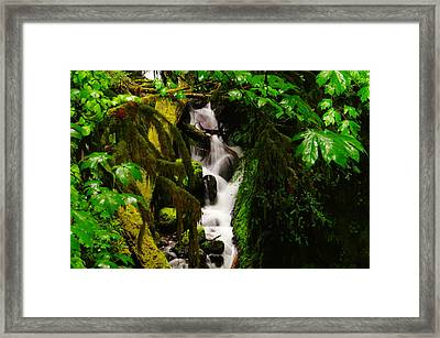 Moss And Water Framed Print by Jeff Swan