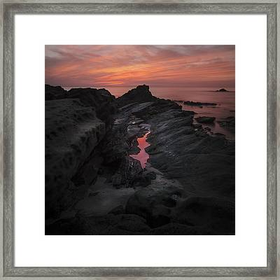 Framed Print featuring the photograph Moss Cove Treasures by Sean Foster