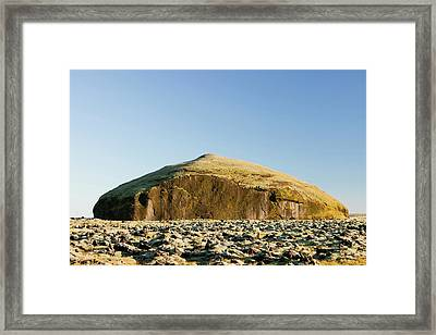 Moss Covered Lava Flow Framed Print by Ashley Cooper