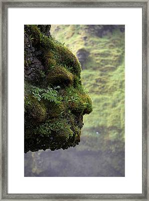 Moss Covered Rock Shaped Like A Face Framed Print by Panoramic Images