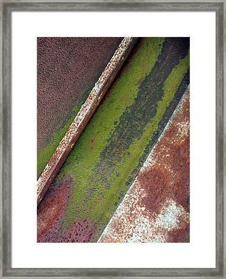 Moss Green-raw Steel Framed Print by Tom Druin