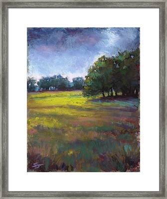 Moss Meadows Framed Print