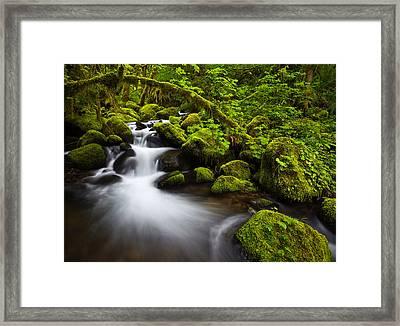 Mossy Arch Cascade Framed Print by Darren  White