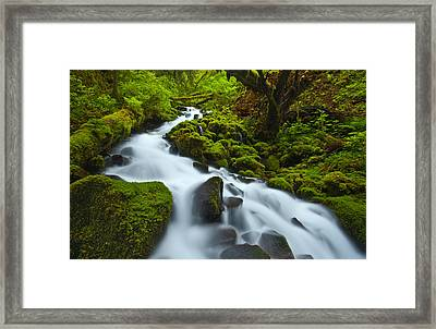 Mossy Creek Cascade Framed Print by Darren  White