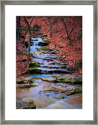 Mossy Creek Framed Print by Cricket Hackmann
