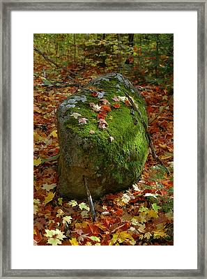 Framed Print featuring the photograph Mossy Rock by Sandra Updyke
