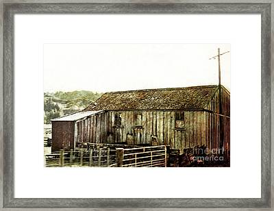 Mossy Shed Framed Print by Linde Townsend