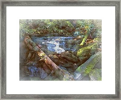 Mossy Smoky Mountain Stream Framed Print