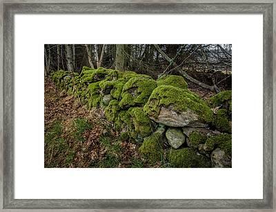 Mossy Stone Fence Framed Print