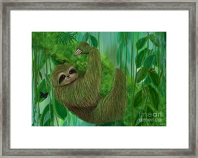 Mossy Three Toed Sloth Framed Print by Nick Gustafson