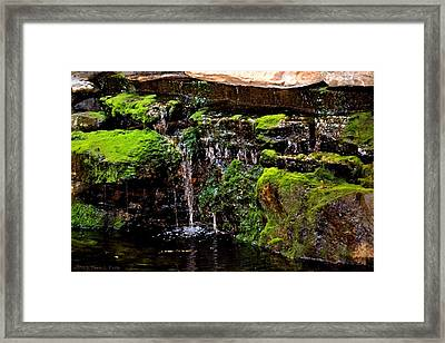 Mossy Waterfall Framed Print by Tara Potts