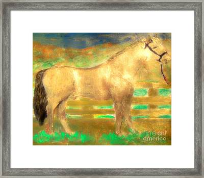 Most Expensive Horse Fusaichi Pegasus Gold Sixty Million Dollars Framed Print by Richard W Linford