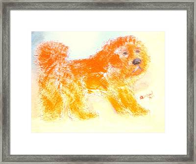 Most Expensive Puppy Red Tibetan Mastiff Big Splash Sold For One And A Half Million Dollars Framed Print by Richard W Linford