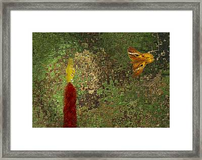 Moth To The Flame Framed Print by Jack Zulli