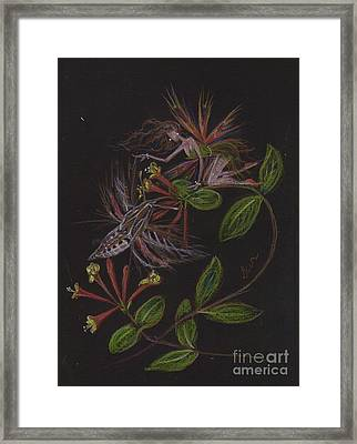 Moth Wing Touch Framed Print