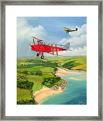 Mothecombe Moths Framed Print
