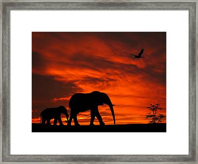 Mother And Baby Elephants Sunset Silhouette Series Framed Print